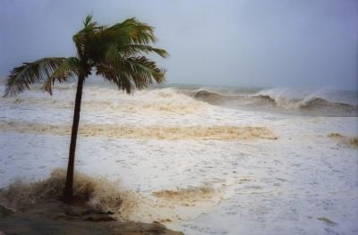 Actualidad cambio climatico huracan xlsemanal 768x506
